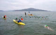 Island-to-Island swim - San Francisco, CA, USA